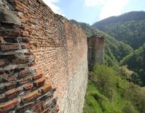 Le château de Dracula au cœur des Carpates : la citadelle de Poenari