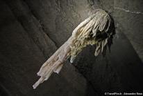 Grotte de Doolin : la plus longue stalactite de l'hémisphère nord est en Irlande