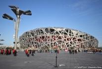 """Jeux Olympiques 2008 – le Stade National de Pékin surnommé """"Nid d'Oiseau"""""""